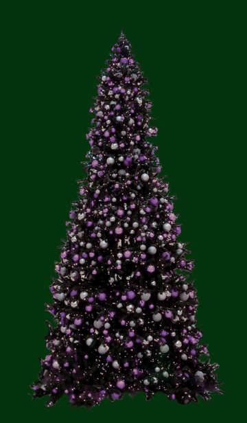 Albero di Natale isolato su priorità bassa verde №40737