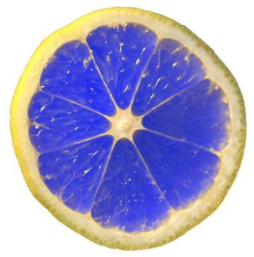 Blue lemon №40832