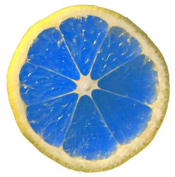 Blue lemon №40833