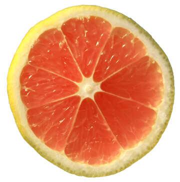 Grapefruit №40828