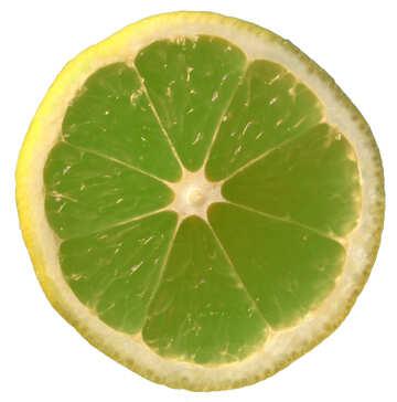Green lemon №40829
