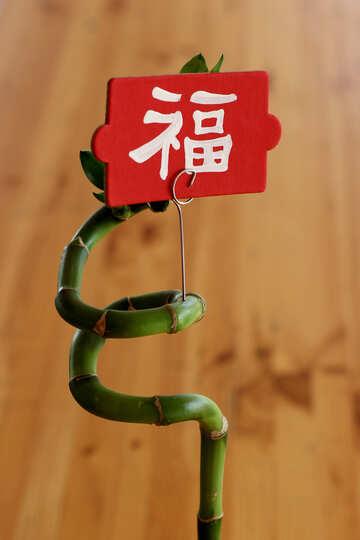Chinesisches restaurant №40915