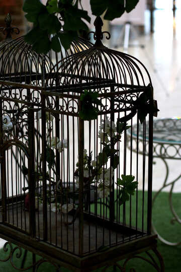 Wrought iron bird cage №40965