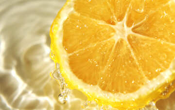 Lemon freshness №40749