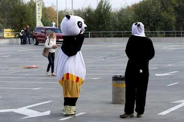 People dressed as pandas №40938