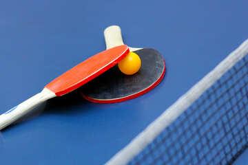 Little tennis №40979