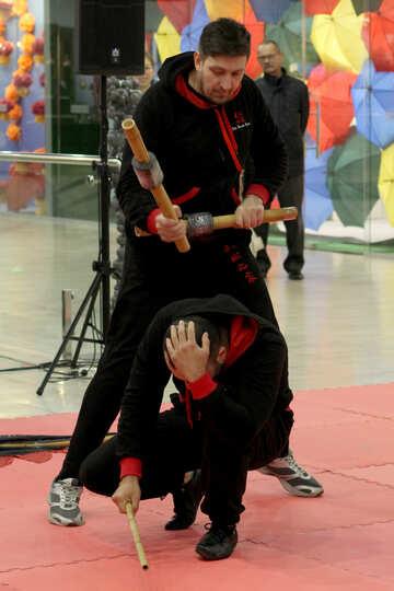 Martial arts №40989