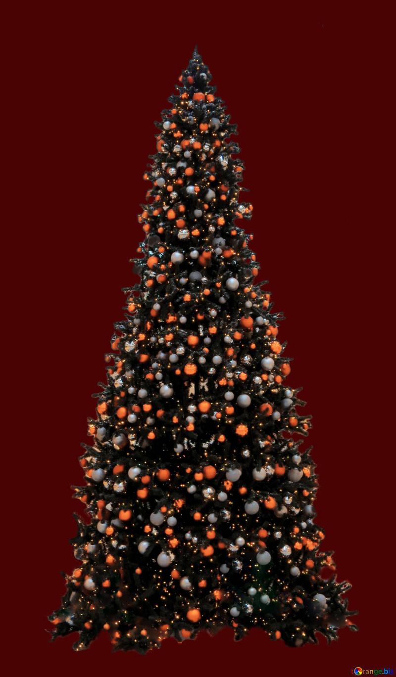 Christmas tree isolated №40741