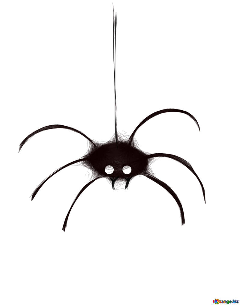 Clipart for Halloween spider №40486
