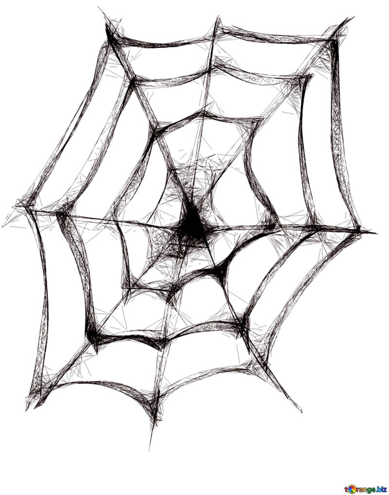 Clipart for Halloween Spider Web №40484