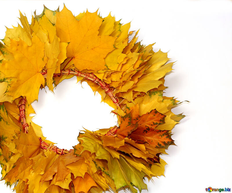Autumn wreath №40864
