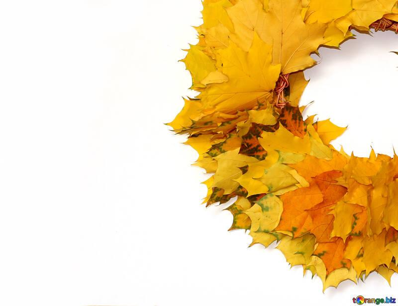 Autumn wreath №40865