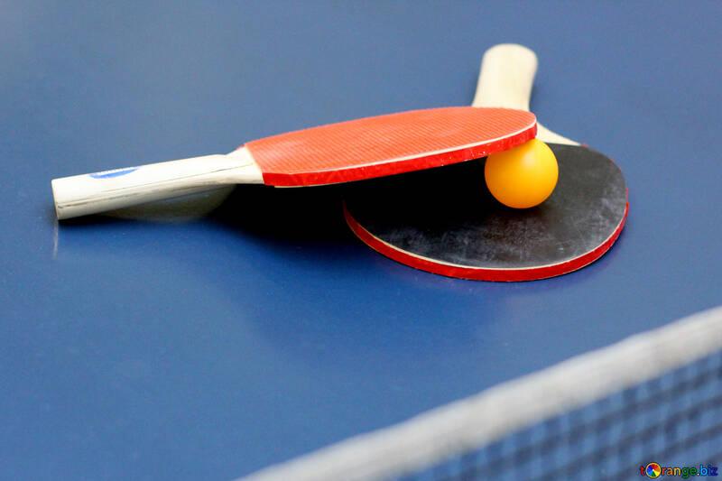 Ping pong №40981