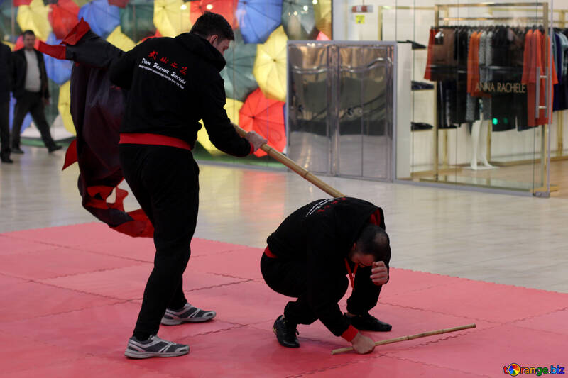 Chinese martial art №40985