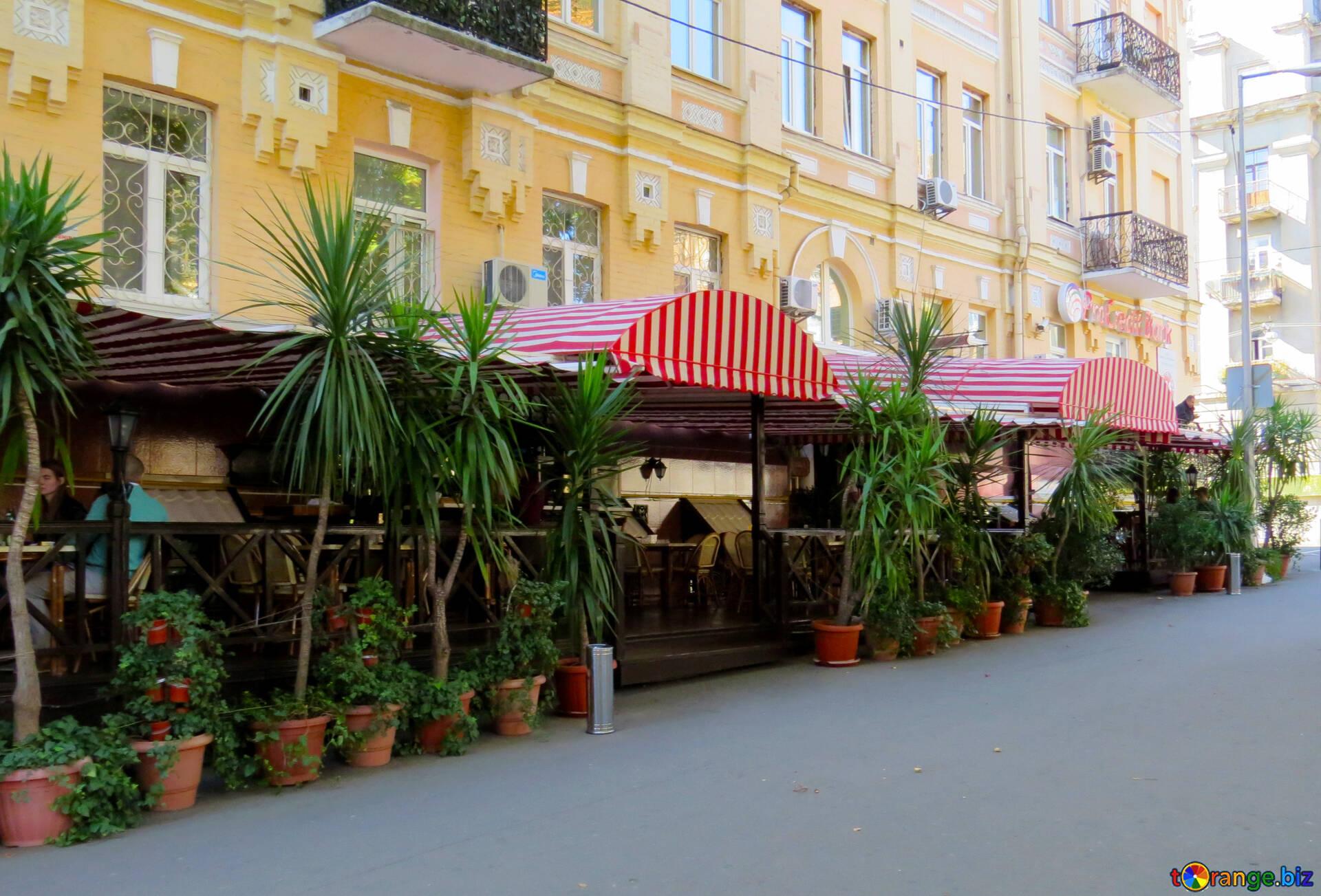 Kiev Architettura Terrazza Estiva Ristorante Mobilia 41010