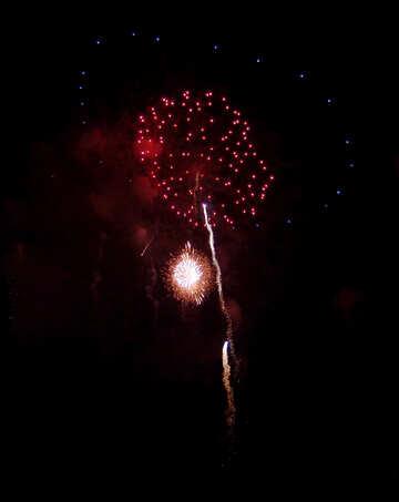 Fireworks flower №41357