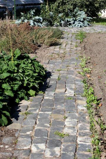 Steinpfad im Garten №41927