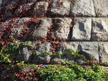 The texture of masonry №41098