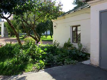 Flower garden near the house №41176