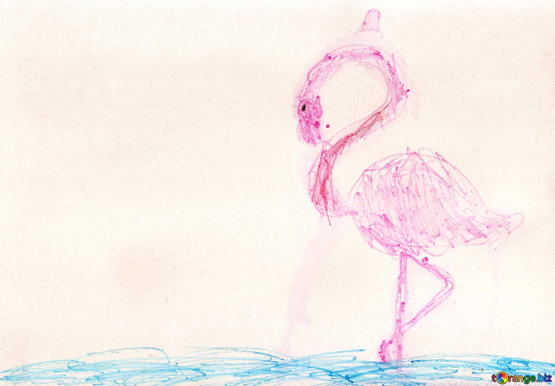 Les Dessins Denfants Oiseaux Le Flamant Rose Dessin Pour