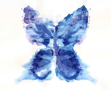 Butterfly color graphics pictures №42690
