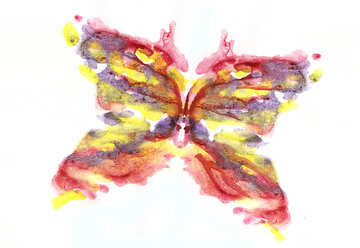 Colored butterfly №42693