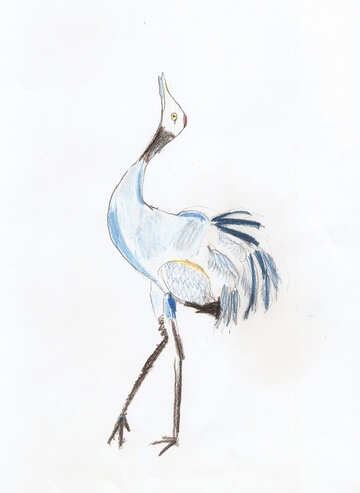 Child`s drawing dancing birds №42761