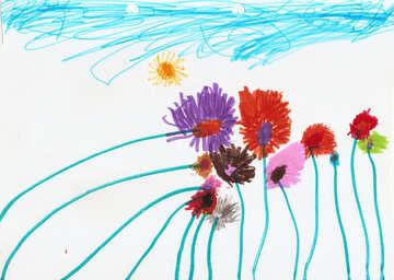 Children`s drawing wildflowers №42859