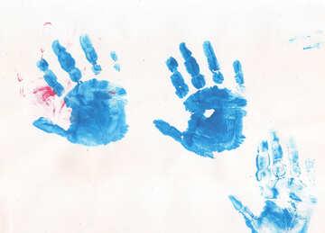 Children`s palms №42820