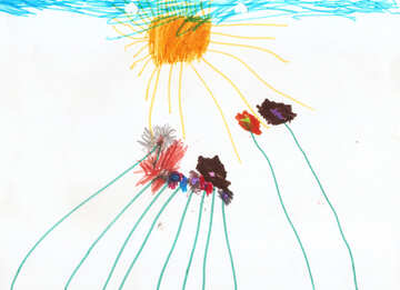 Kinderzeichnung, die Blumen und die Sonne №42858