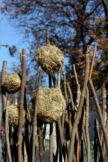 Decorative nests in trees №42018