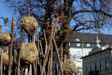 Decorative trees №42019