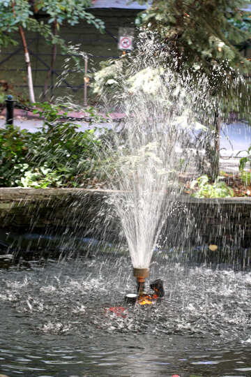 Fountain in the garden №42117