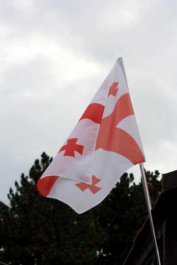 Georgia Flag №42427