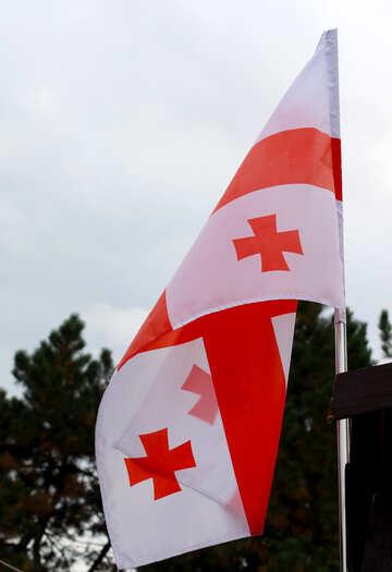 Flag of Georgia №42432