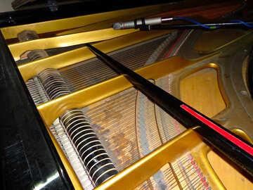Piano №42895