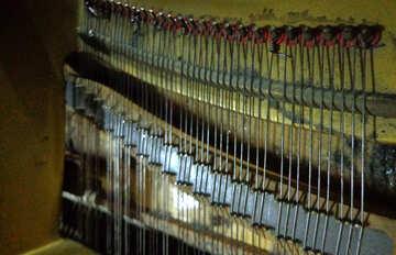 Stringed instrument №42947