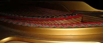 Strings №42905