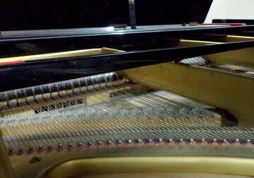 The strings of the piano №42960