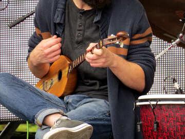 Georgian guitar Panduri №42455