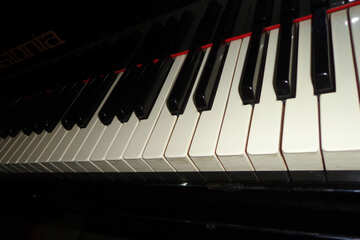 Piano keys №42909