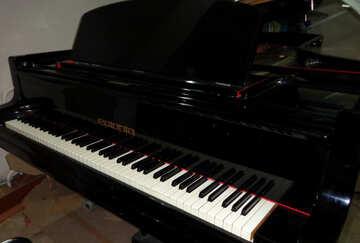 Piano keys №42912