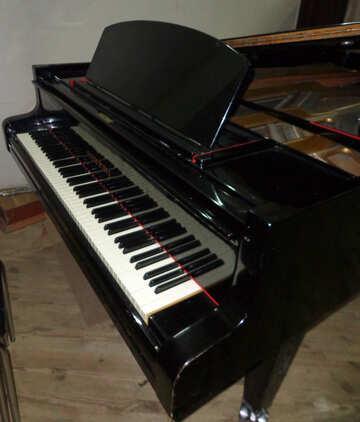 Piano keys №42916