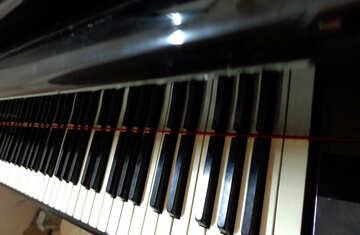 Piano keys №42948