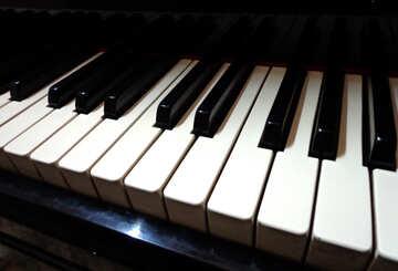 Piano keys №42951