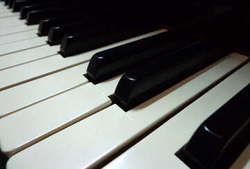 Piano keys №42957
