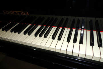 Piano keyboard №42907