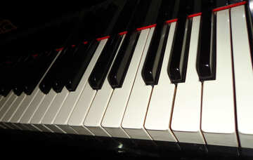 Piano Keyboard №42908