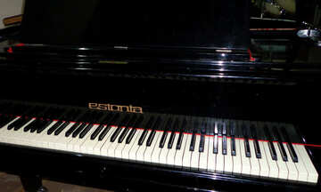 Piano keyboard №42913
