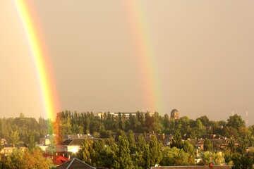 Double Rainbow №42300